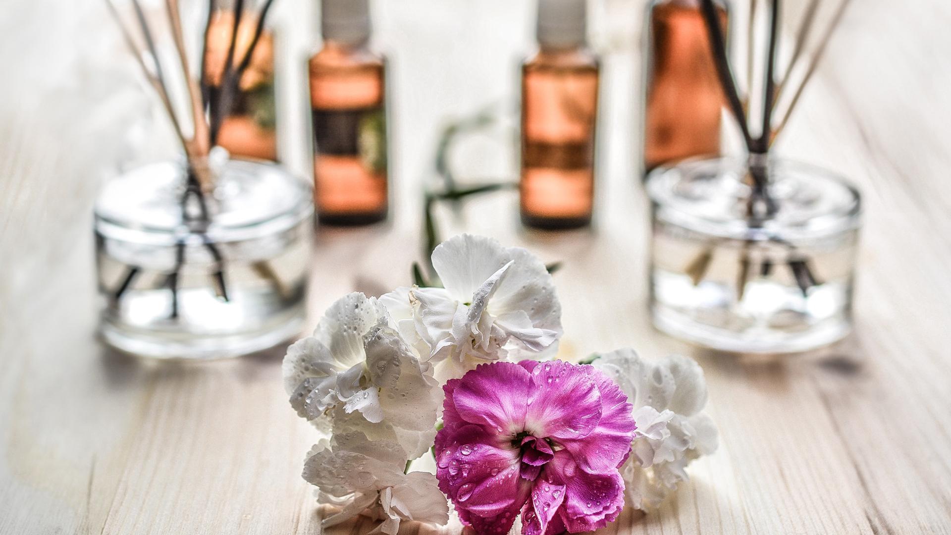 novi parfemi u drogerijama
